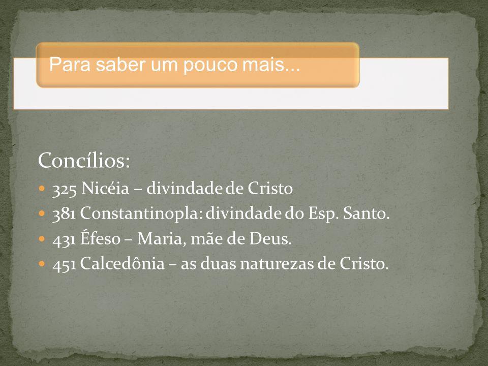 Princípios seguidos e o perfil do cristão: minoridade, itinerante, fraternidade, pobreza libertadora.