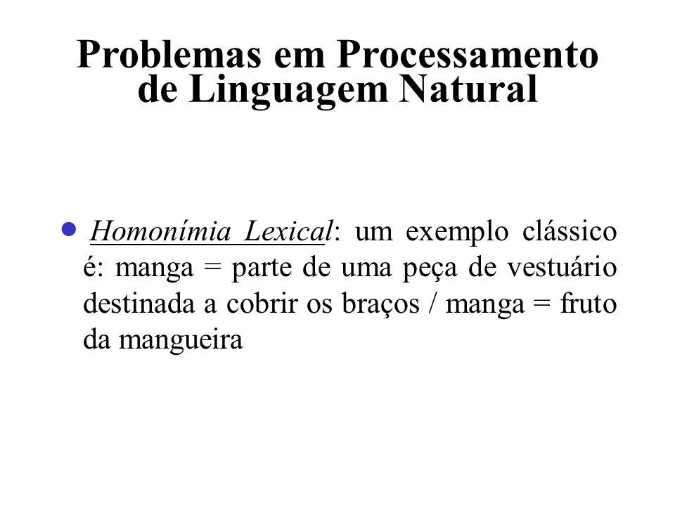Problemas em Processamento de Linguagem Natural Homonímia Lexical: um exemplo clássico é: manga = parte de uma peça de vestuário destinada a cobrir os