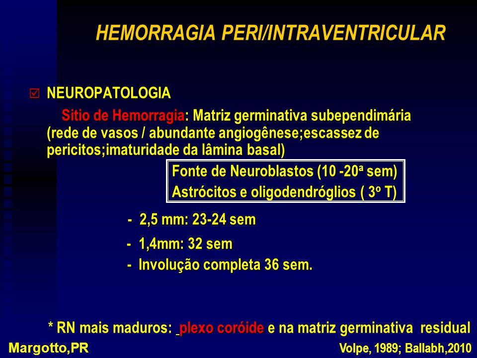 HEMORRAGIA PERI/INTRAVENTRICULAR þ NEUROPATOLOGIA Sitio de Hemorragia: Matriz germinativa subependimária (rede de vasos / abundante angiogênese;escassez de pericitos;imaturidade da lâmina basal) Sitio de Hemorragia: Matriz germinativa subependimária (rede de vasos / abundante angiogênese;escassez de pericitos;imaturidade da lâmina basal) Fonte de Neuroblastos (10 -20 a sem) Astrócitos e oligodendróglios ( 3 o T) - 2,5 mm: 23-24 sem - 2,5 mm: 23-24 sem - 1,4mm: 32 sem - 1,4mm: 32 sem - Involução completa 36 sem.