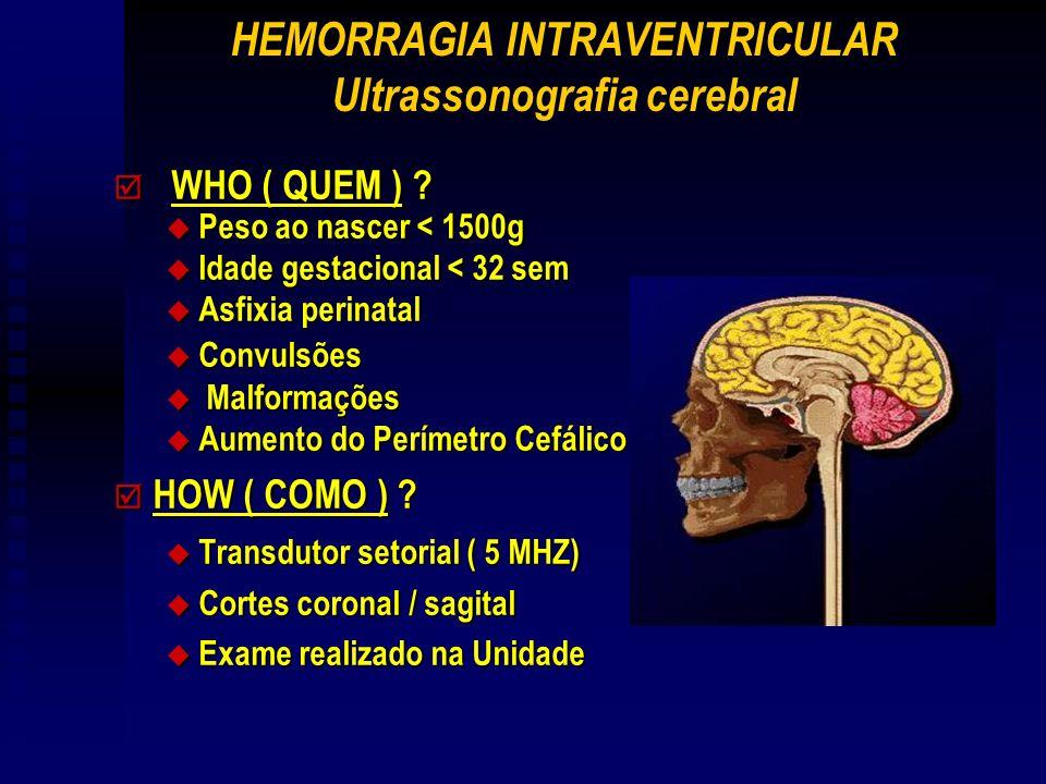 HEMORRAGIA INTRAVENTRICULAR Ultrassonografia cerebral þ WHO ( QUEM ) .