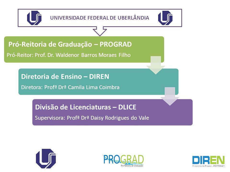 Pró-Reitoria de Graduação – PROGRAD Pró-Reitor: Prof. Dr. Waldenor Barros Moraes Filho Diretoria de Ensino – DIREN Diretora: Profª Drª Camila Lima Coi