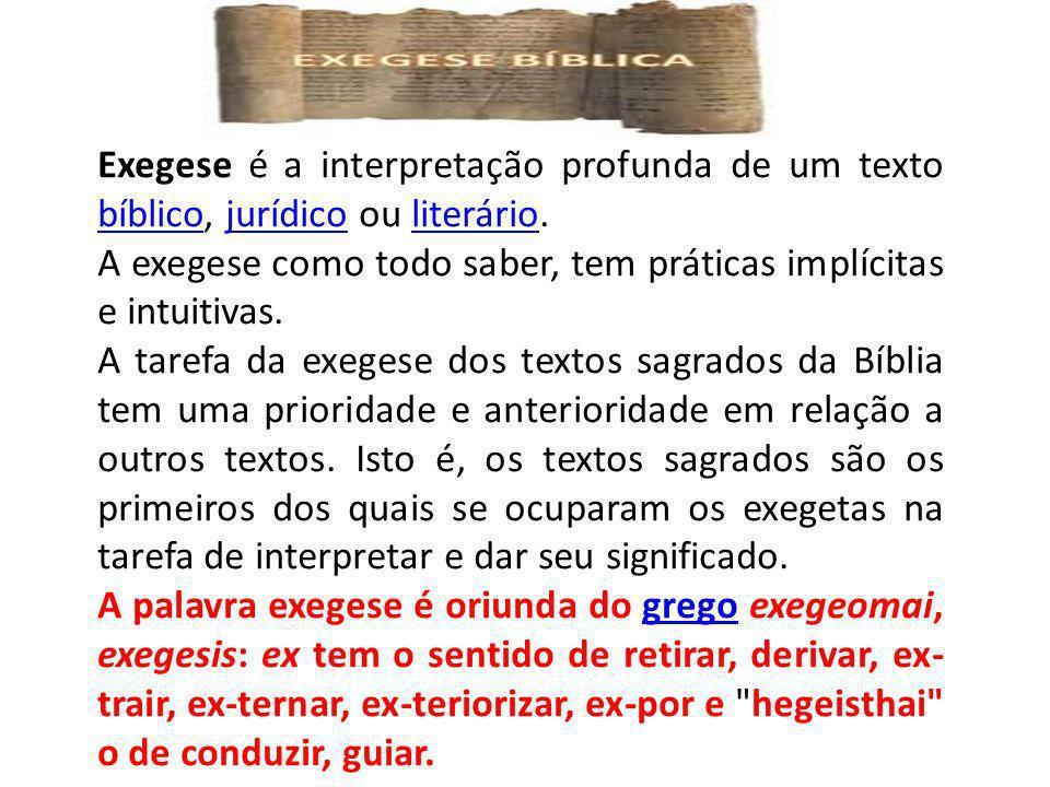Exegese é a interpretação profunda de um texto bíblico, jurídico ou literário.