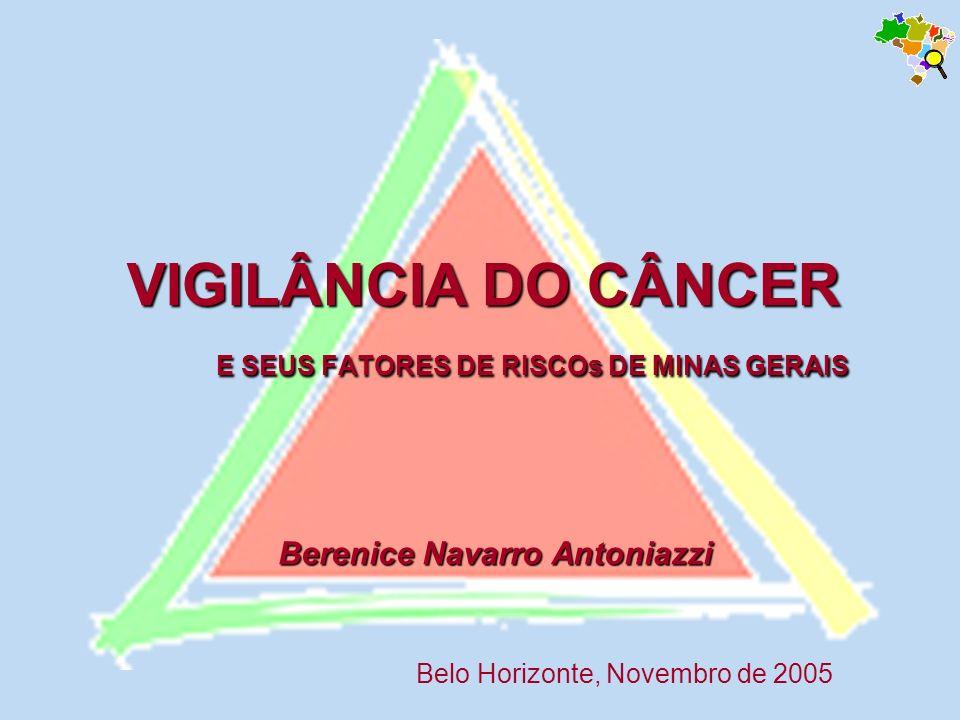 VIGILÂNCIA DO CÂNCER E SEUS FATORES DE RISCOs DE MINAS GERAIS Belo Horizonte, Novembro de 2005 Berenice Navarro Antoniazzi