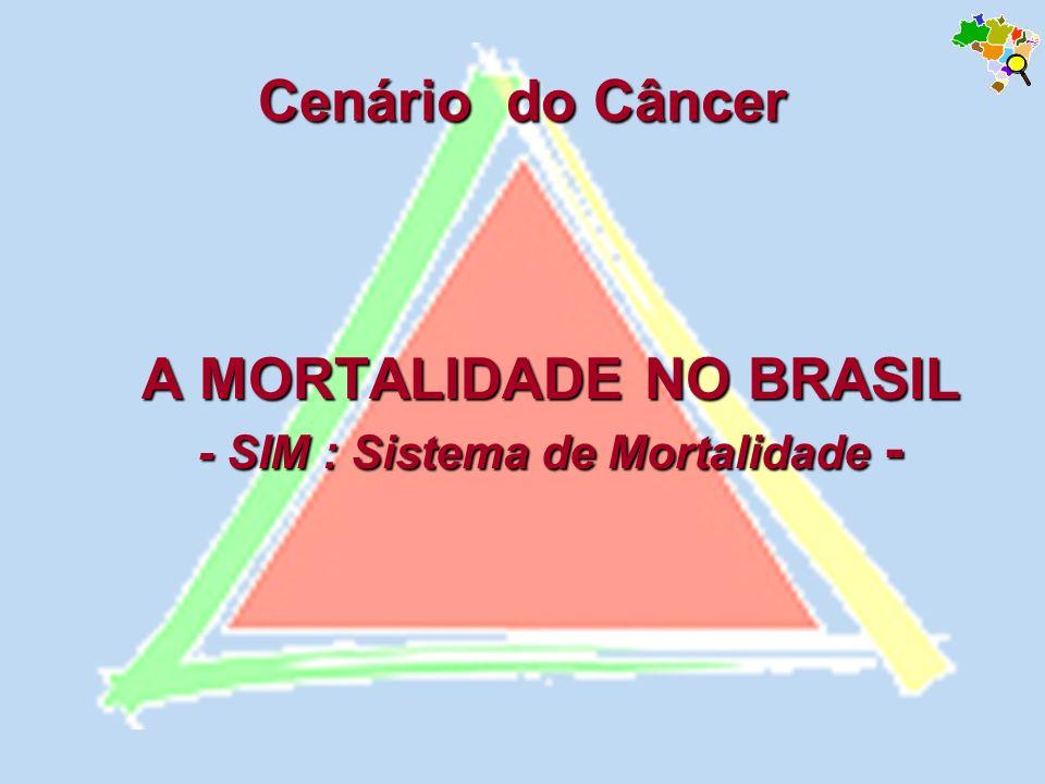 Magnitude do Câncer na Mortalidade - Magnitude do Câncer na Mortalidade - Distribuição proporcional das mortes por grupos de causa, Brasil, 1930 a 2002 Fontes: MS/SVS/DASIS/CGIAE/Sistema de Informação sobre Mortalidade – SIM MS/INCA/Conprev/Divisão de Informação