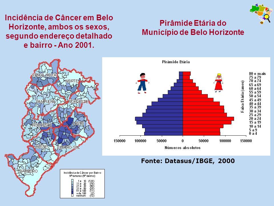 Incidência de Câncer em Belo Horizonte, ambos os sexos, segundo endereço detalhado e bairro - Ano 2001. Pirâmide Etária do Município de Belo Horizonte