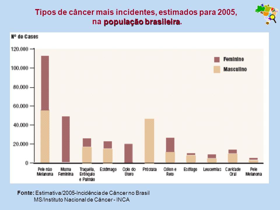 Fonte: Estimativa/2005-Incidência de Câncer no Brasil MS/Instituto Nacional de Câncer - INCA população brasileira Tipos de câncer mais incidentes, est