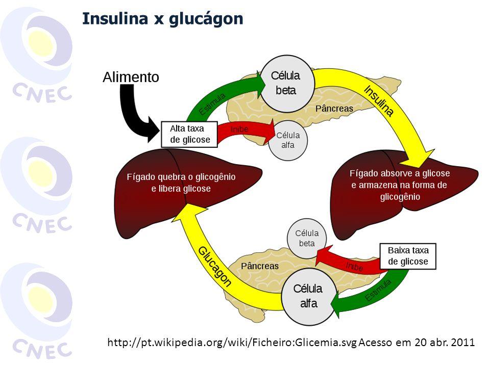 Glucagon Adrenalina Cortisol Insulina 70-150mg/dl GLICEMIA CONTROLE DA GLICEMIA