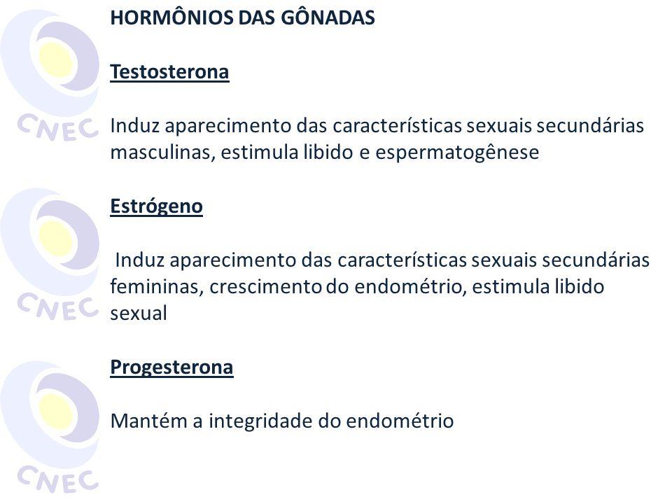 HORMÔNIOS DAS GÔNADAS Testosterona Induz aparecimento das características sexuais secundárias masculinas, estimula libido e espermatogênese Estrógeno Induz aparecimento das características sexuais secundárias femininas, crescimento do endométrio, estimula libido sexual Progesterona Mantém a integridade do endométrio