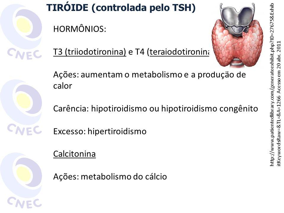 PARATIRÓIDES [Ca 2+ ] sanguínea absorção intestinal reabsorção de cálcio nos rins liberação dos ossos PARATORMÔNIO CALCITONINA absorção intestinal reabsorção nos rins depósito nos ossos http://www.patientedlibrary.com/generateexhibit.php?ID=27675&ExhibitKeywordsRaw=&TL= &A=1266 Acesso em 20 abr.