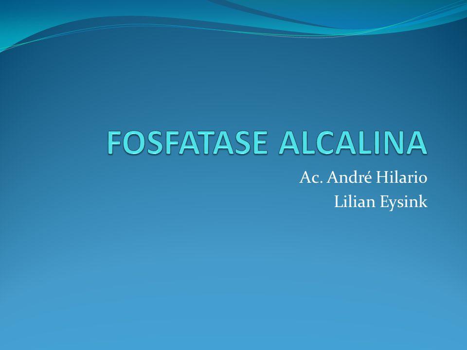 Ac. André Hilario Lilian Eysink