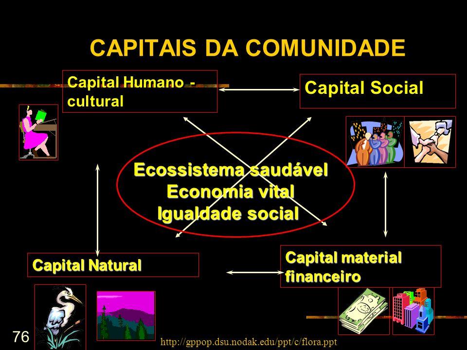 76 CAPITAIS DA COMUNIDADE Capital Social Capital material financeiro Capital Humano - cultural Capital Natural Ecossistema saudável Economia vital Igu