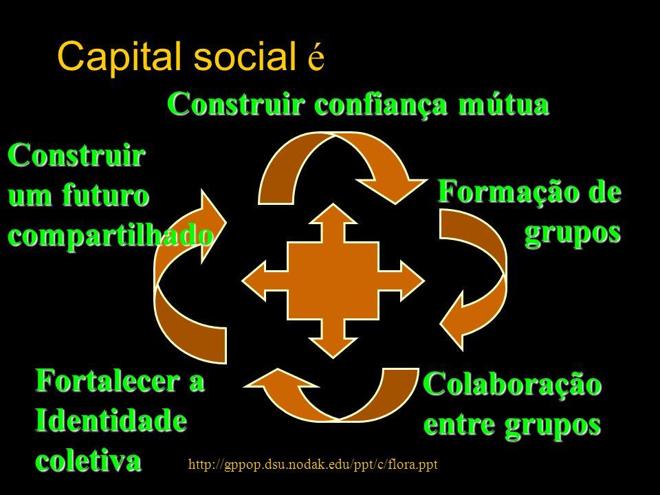 Construir confiança mútua Formação de grupos grupos Colaboração entre grupos Fortalecer a Identidadecoletiva Construir um futuro compartilhado Capital