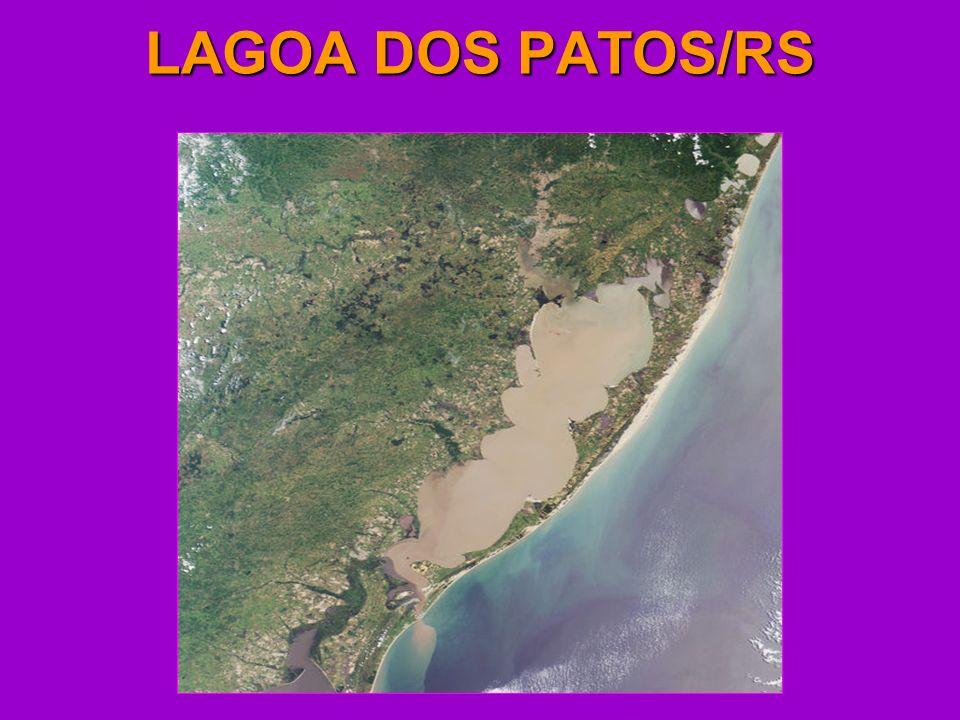 LAGOA DOS PATOS/RS