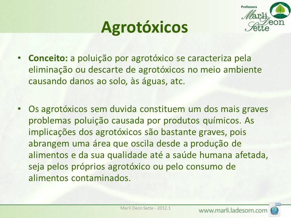 Agrotóxicos Conceito: a poluição por agrotóxico se caracteriza pela eliminação ou descarte de agrotóxicos no meio ambiente causando danos ao solo, às águas, atc.