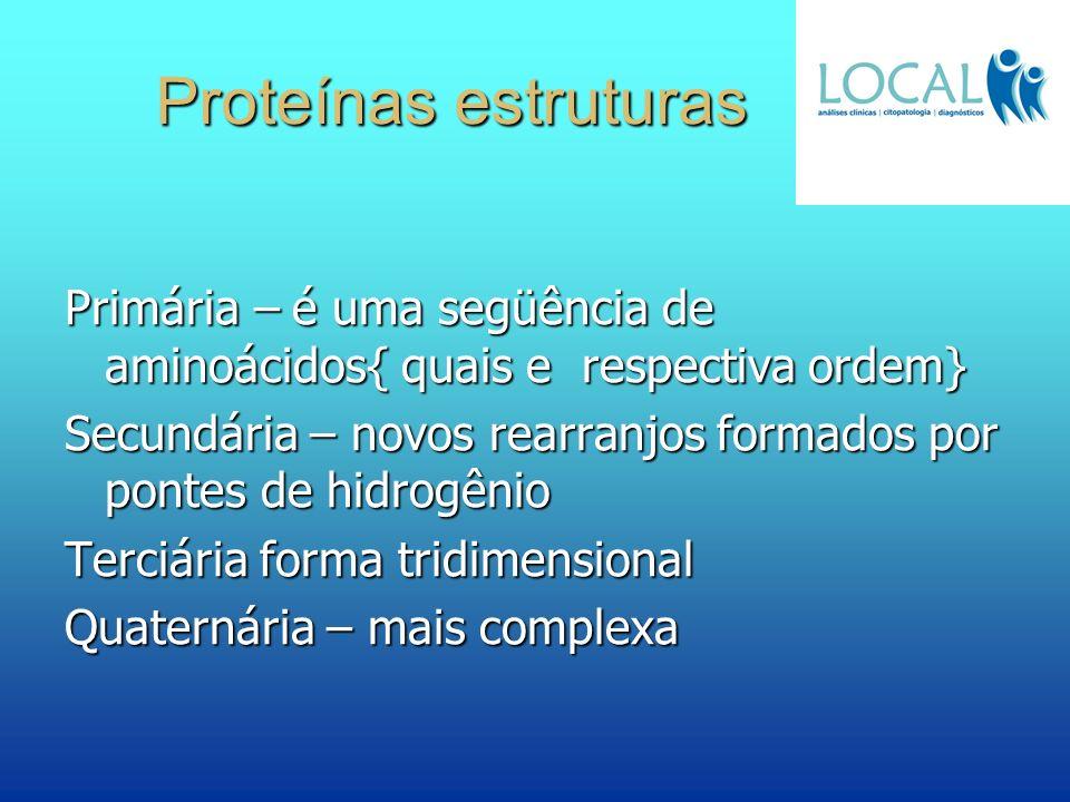 Proteínas estruturas Primária – é uma següência de aminoácidos{ quais e respectiva ordem} Secundária – novos rearranjos formados por pontes de hidrogê