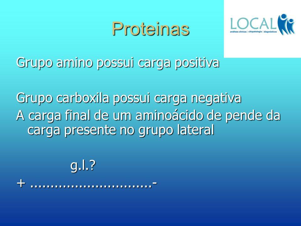 Proteinas Grupo amino possui carga positiva Grupo carboxila possui carga negativa A carga final de um aminoácido de pende da carga presente no grupo l