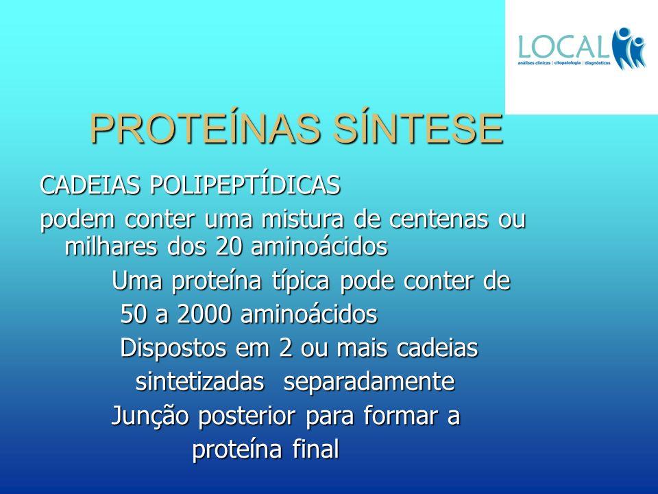PROTEÍNAS SÍNTESE CADEIAS POLIPEPTÍDICAS podem conter uma mistura de centenas ou milhares dos 20 aminoácidos Uma proteína típica pode conter de Uma pr
