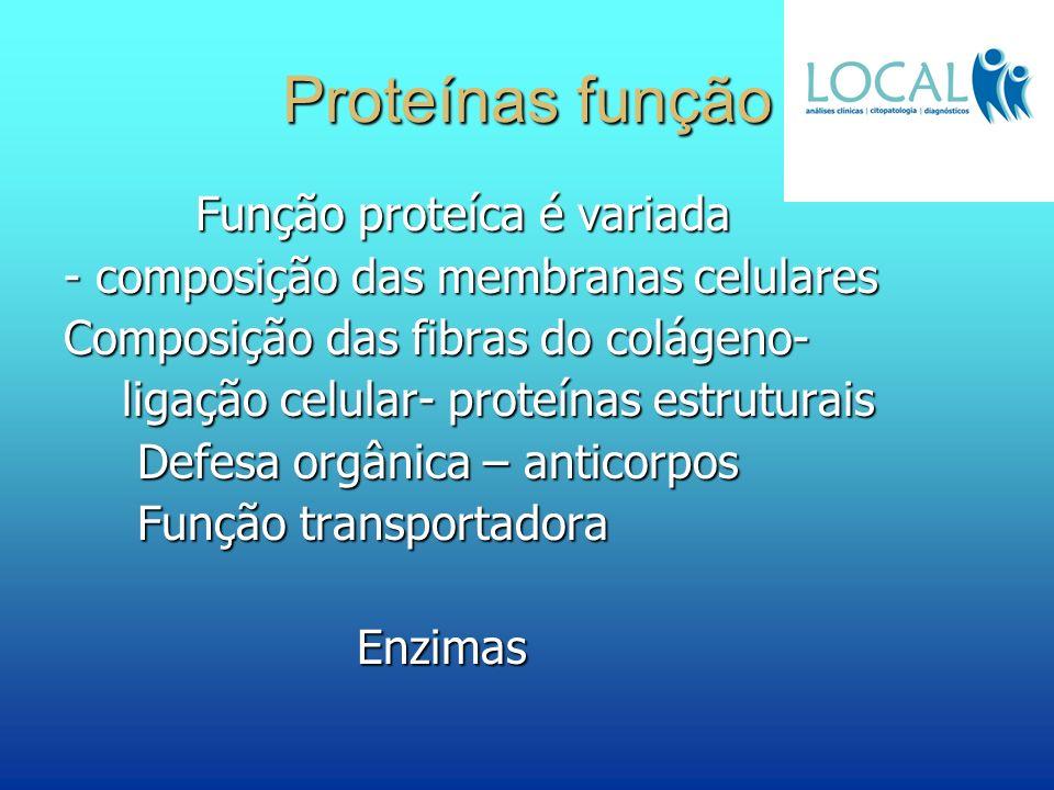 Proteínas função Função proteíca é variada Função proteíca é variada - composição das membranas celulares Composição das fibras do colágeno- ligação c