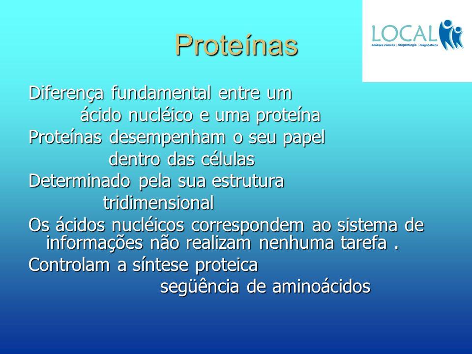 Proteínas Diferença fundamental entre um ácido nucléico e uma proteína ácido nucléico e uma proteína Proteínas desempenham o seu papel dentro das célu