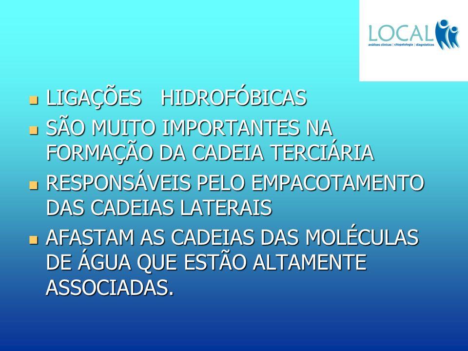 LIGAÇÕES HIDROFÓBICAS LIGAÇÕES HIDROFÓBICAS SÃO MUITO IMPORTANTES NA FORMAÇÃO DA CADEIA TERCIÁRIA SÃO MUITO IMPORTANTES NA FORMAÇÃO DA CADEIA TERCIÁRI
