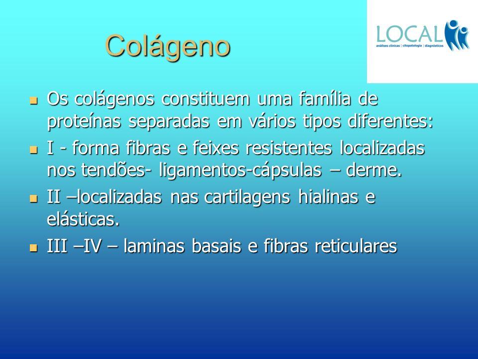 Colágeno Os colágenos constituem uma família de proteínas separadas em vários tipos diferentes: Os colágenos constituem uma família de proteínas separ