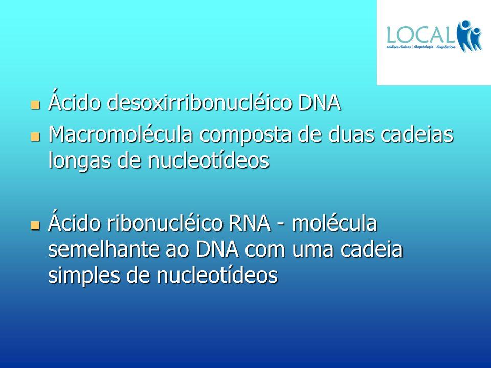 Ácido desoxirribonucléico DNA Ácido desoxirribonucléico DNA Macromolécula composta de duas cadeias longas de nucleotídeos Macromolécula composta de du