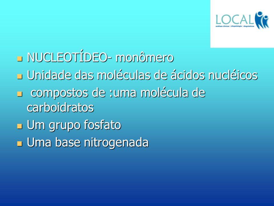 NUCLEOTÍDEO- monômero NUCLEOTÍDEO- monômero Unidade das moléculas de ácidos nucléicos Unidade das moléculas de ácidos nucléicos compostos de :uma molé