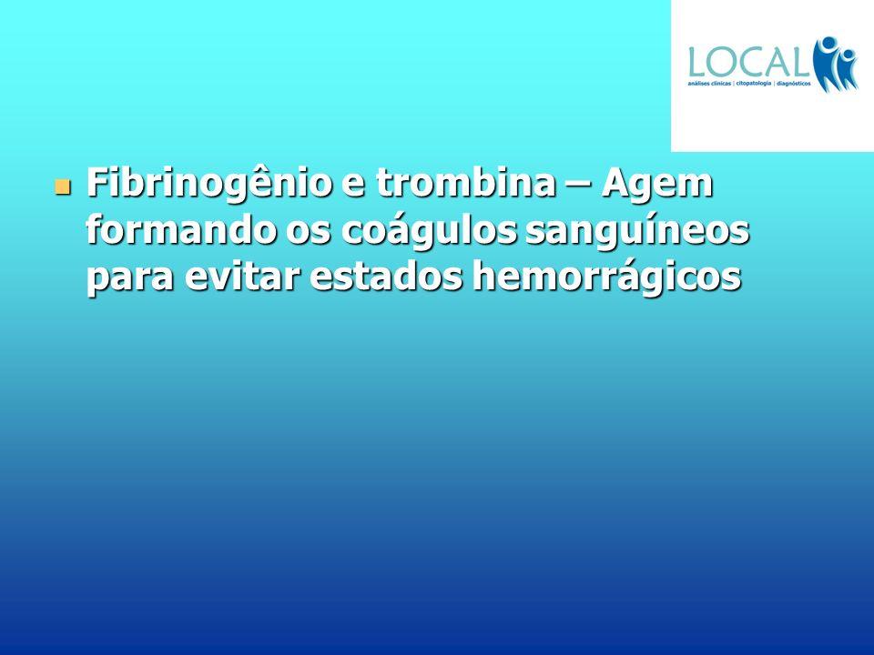 Fibrinogênio e trombina – Agem formando os coágulos sanguíneos para evitar estados hemorrágicos Fibrinogênio e trombina – Agem formando os coágulos sa