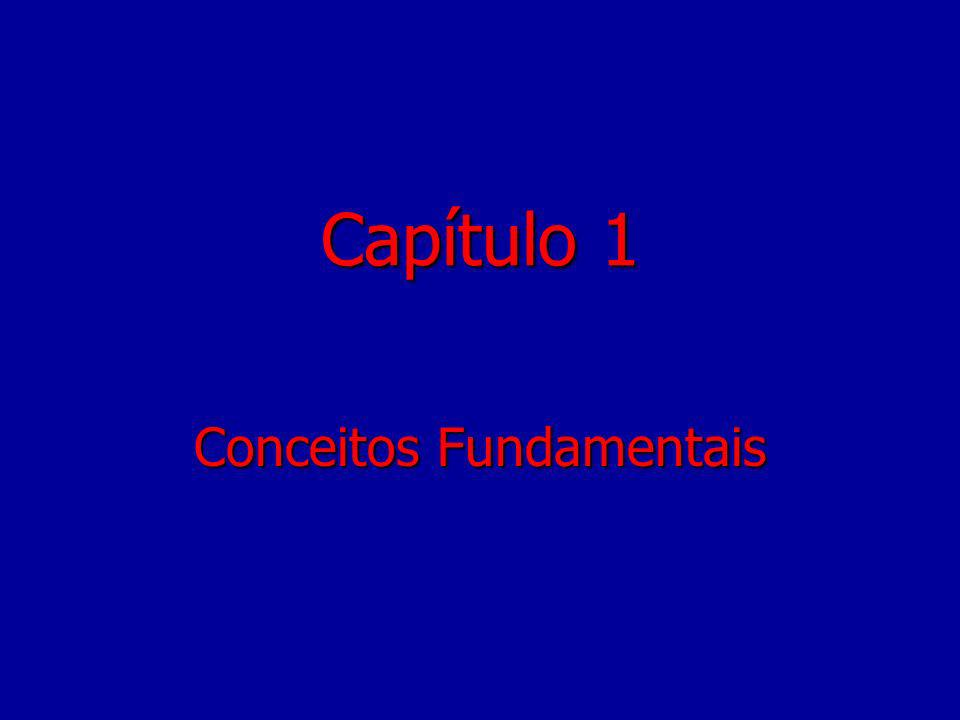 Capítulo 1 Conceitos Fundamentais