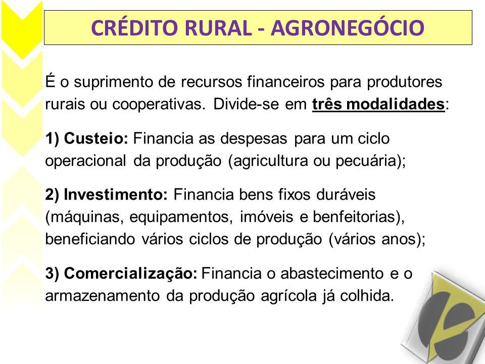 CRÉDITO RURAL - AGRONEGÓCIO É o suprimento de recursos financeiros para produtores rurais ou cooperativas. Divide-se em três modalidades: 1) Custeio: