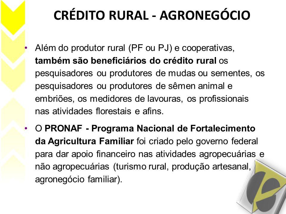 CRÉDITO RURAL - AGRONEGÓCIO Além do produtor rural (PF ou PJ) e cooperativas, também são beneficiários do crédito rural os pesquisadores ou produtores
