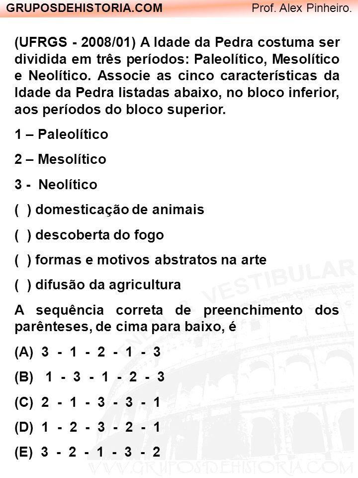 GRUPOSDEHISTORIA.COM Prof. Alex Pinheiro. (UFRGS - 2008/01) A Idade da Pedra costuma ser dividida em três períodos: Paleolítico, Mesolítico e Neolític