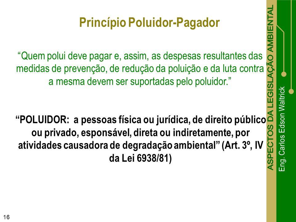 16 Princípio Poluidor-Pagador Quem polui deve pagar e, assim, as despesas resultantes das medidas de prevenção, de redução da poluição e da luta contr