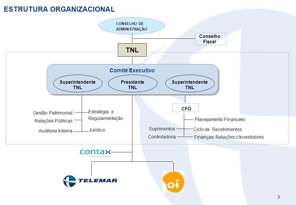 3 ESTRUTURA ORGANIZACIONAL Comitê Executivo Controladoria Suprimentos Finanças/ Relações c/Investidores CFO Estratégia e Regulamentação Jurídico Plane