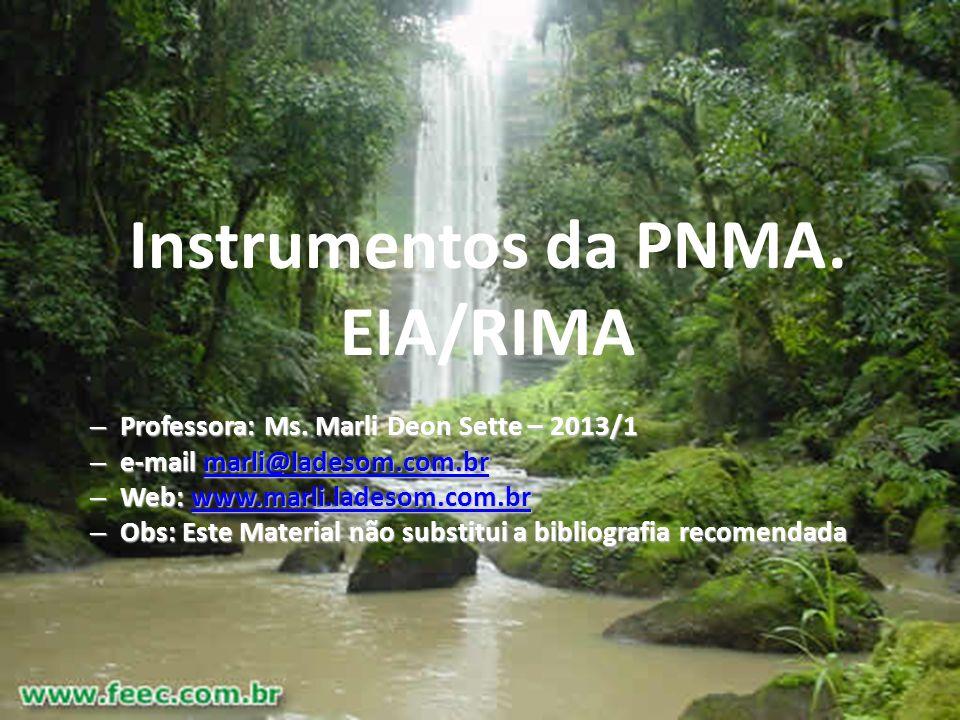 Marli Deon Sette - 20132 Prof> Marli T. Deon Sette - 2011.22 Instrumentos da PNMA. EIA/RIMA – Professora: Ms. Marli Deon Sette – 2013/1 – e-mail marli