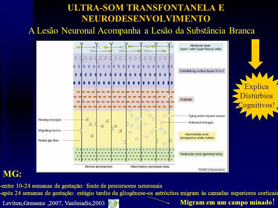 ULTRA-SOM TRANSFONTANELA E NEURODESENVOLVIMENTO A Lesão Neuronal Acompanha a Lesão da Substância Branca -entre 10-24 semanas de gestação: fonte de pre