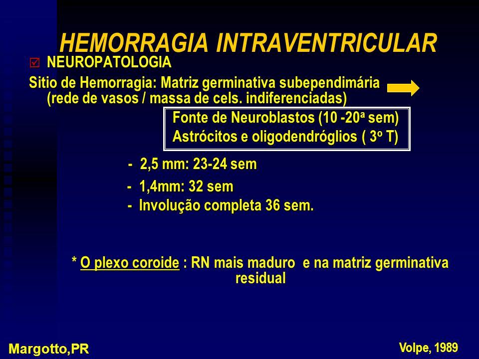 þ NEUROPATOLOGIA Sitio de Hemorragia: Matriz germinativa subependimária (rede de vasos / massa de cels. indiferenciadas) Fonte de Neuroblastos (10 -20