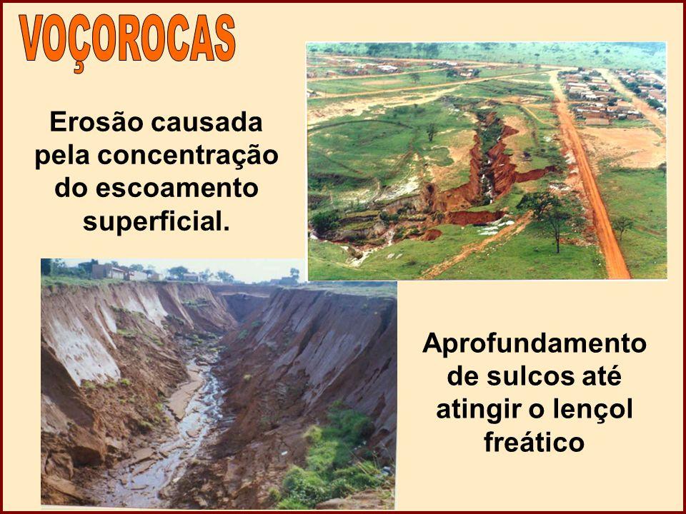 Erosão causada pela concentração do escoamento superficial.