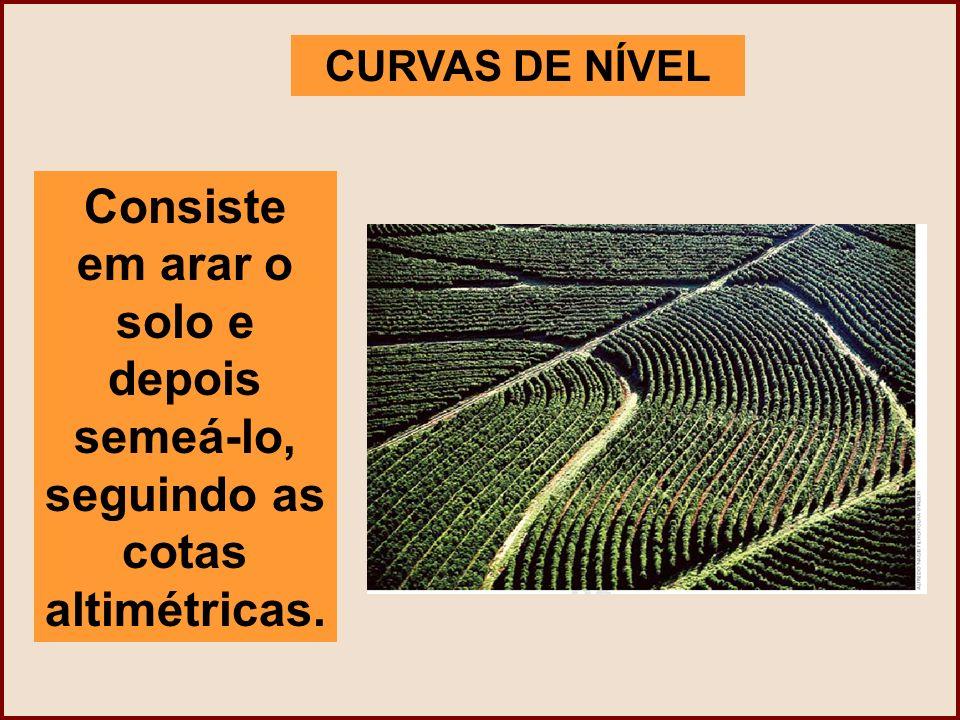 CURVAS DE NÍVEL Consiste em arar o solo e depois semeá-lo, seguindo as cotas altimétricas.