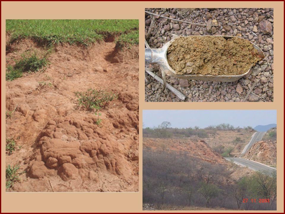 (MACK) Os solos do semi-árido nordestino são, em geral, mais rasos que os solos do Sul e do Sudeste do Brasil, em virtude: a) da intensa lixiviação na região, que provoca constante dissolução e transporte dos elementos mais solúveis contidos nos solos.