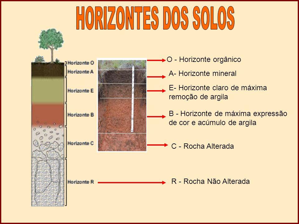 O - Horizonte orgânico A- Horizonte mineral E- Horizonte claro de máxima remoção de argila B - Horizonte de máxima expressão de cor e acúmulo de argila C - Rocha Alterada R - Rocha Não Alterada
