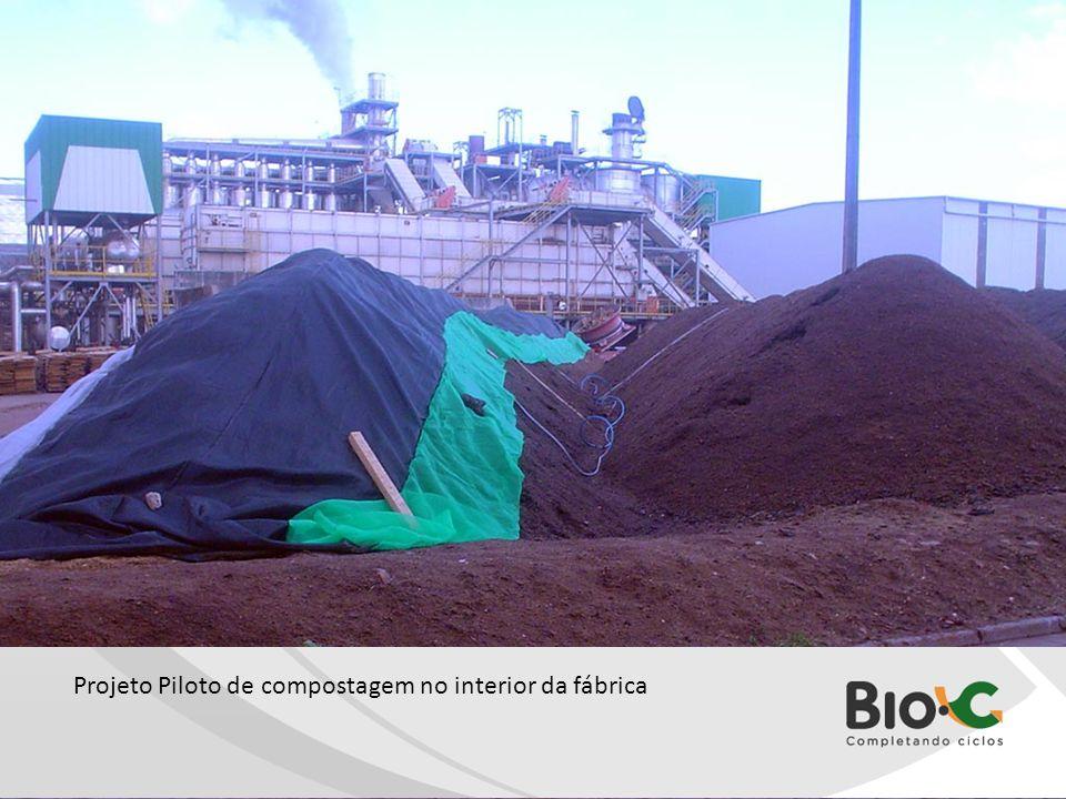Leira 1.jpg Projeto Piloto de compostagem no interior da fábrica