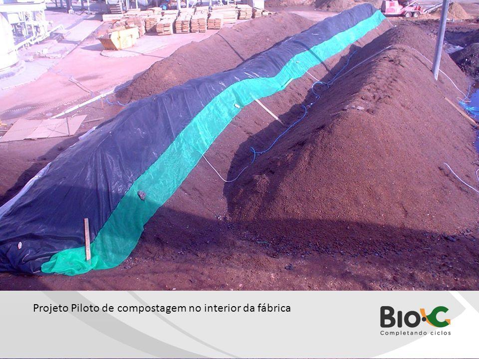 Leira 2 Sombrite.jpg Projeto Piloto de compostagem no interior da fábrica