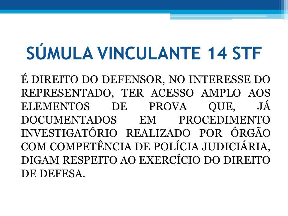 SÚMULA VINCULANTE 14 STF É DIREITO DO DEFENSOR, NO INTERESSE DO REPRESENTADO, TER ACESSO AMPLO AOS ELEMENTOS DE PROVA QUE, JÁ DOCUMENTADOS EM PROCEDIM