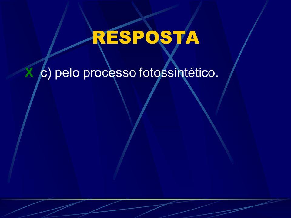 RESPOSTA X c) pelo processo fotossintético.