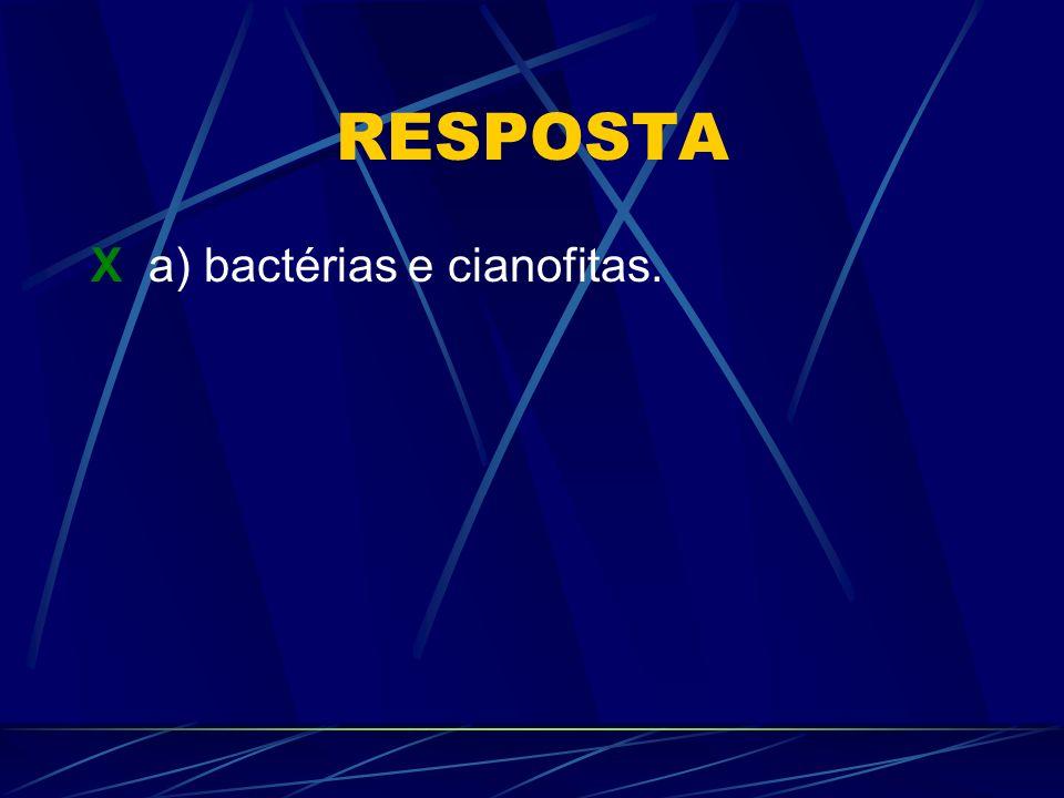 RESPOSTA X a) bactérias e cianofitas.