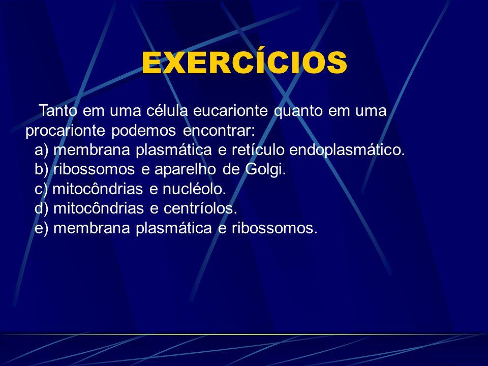 EXERCÍCIOS Tanto em uma célula eucarionte quanto em uma procarionte podemos encontrar: a) membrana plasmática e retículo endoplasmático. b) ribossomos