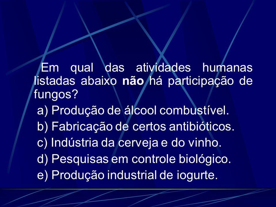 Em qual das atividades humanas listadas abaixo não há participação de fungos? a) Produção de álcool combustível. b) Fabricação de certos antibióticos.