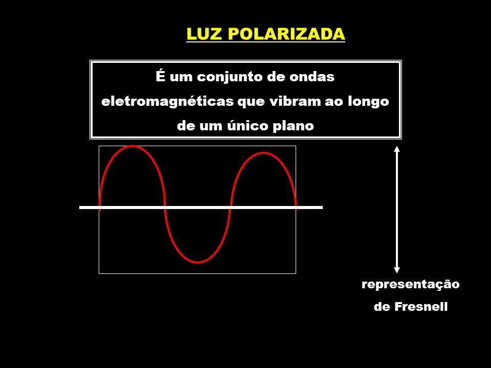 É um conjunto de ondas eletromagnéticas que vibram ao longo de um único plano LUZ POLARIZADA representação de Fresnell