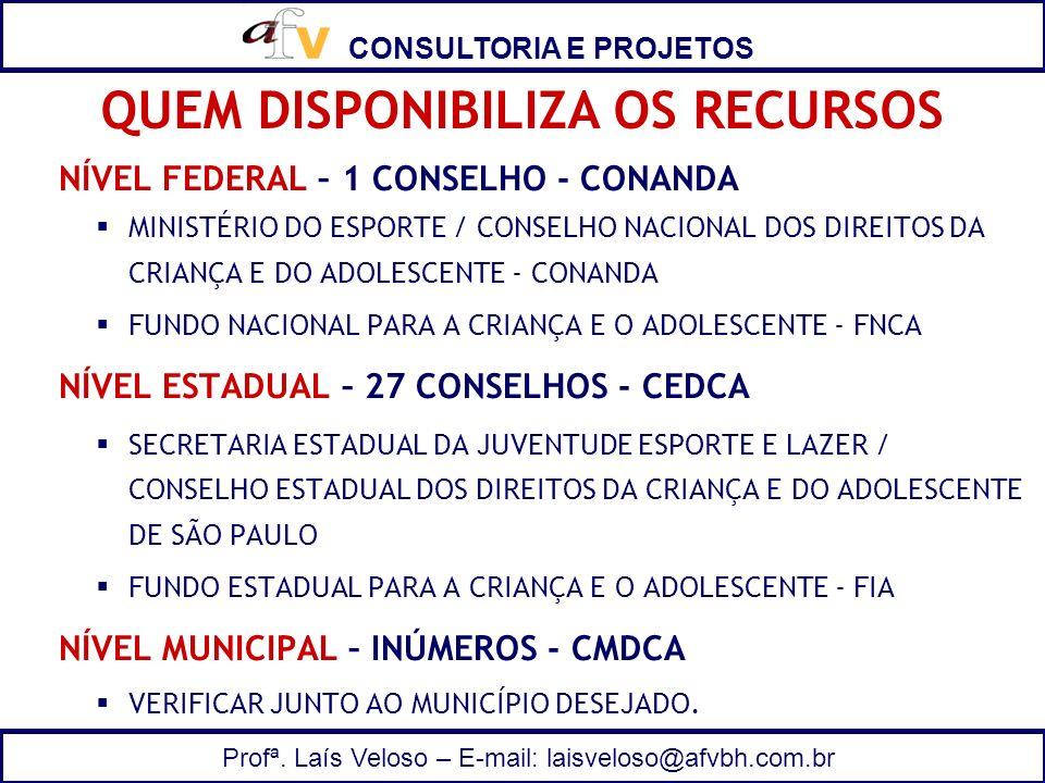 CONSULTORIA E PROJETOS Profª. Laís Veloso – E-mail: laisveloso@afvbh.com.br NÍVEL FEDERAL – 1 CONSELHO - CONANDA MINISTÉRIO DO ESPORTE / CONSELHO NACI